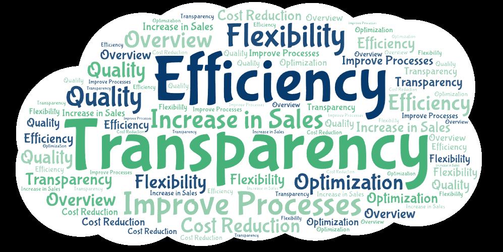 Bpanda process management reasons for implementation